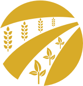 Biodiversity above ground icon