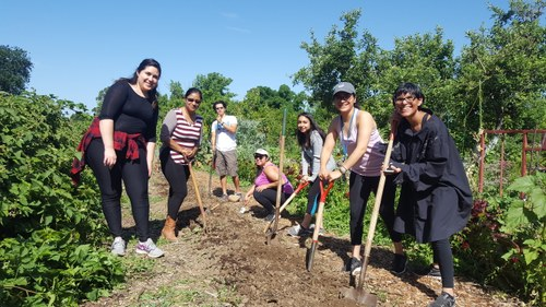 Dr. Natalia Deeb-Sossa and her students from a Chicanx Studies Class preparing a bed in our Ecological Garden.