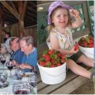 various photos of agritourism
